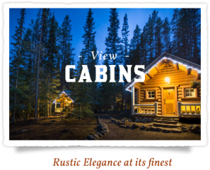 storm mountain lodge banff cabins and lodges alberta